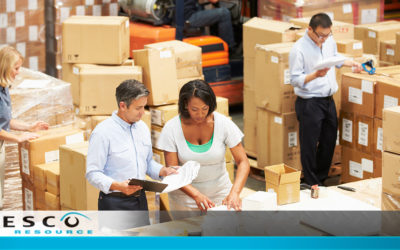 How to Put Together a Successful Warehouse Team